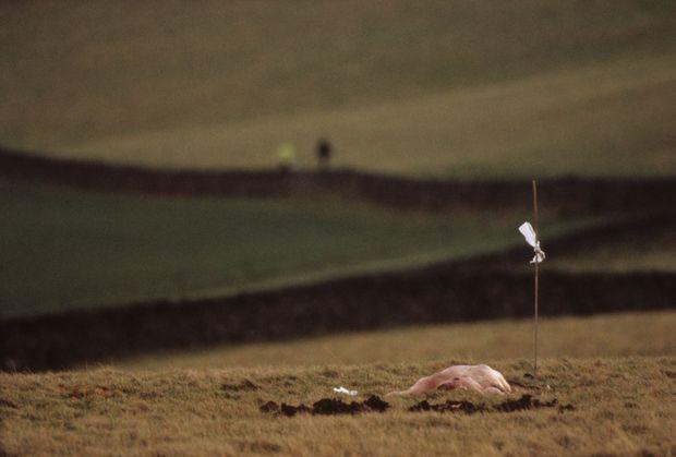 Un corps dans la campagne de Lockerbie.