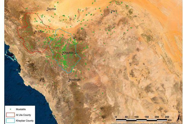 Répartition des mustatils dans le nord-ouest de l'Arabie Saoudite.
