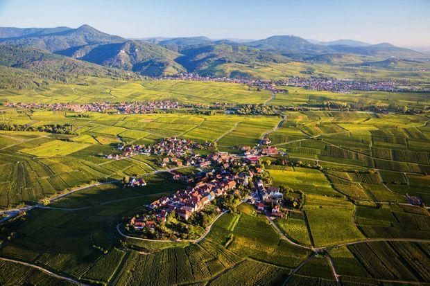 Perché sur une colline, le petit village de Zellenberg vit loin du tourisme de masse.