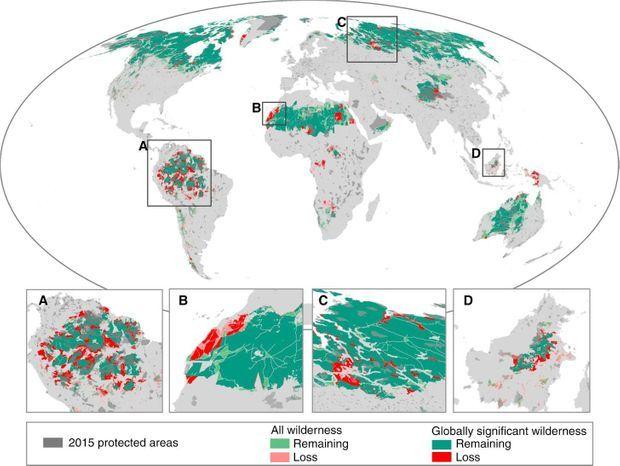 En vert, les zones encore sauvages et en rouge, les pertes des espaces naturels perdus au cours des dernières décennies. En gris, ce sont les zones protégées.