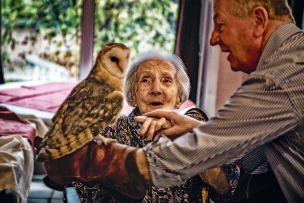 Hubert Josselin guide la main d'une vieille dame pour caresser Mirabelle, à la maison de retraite Domus Vi, à Charnay-lès-Mâcon.