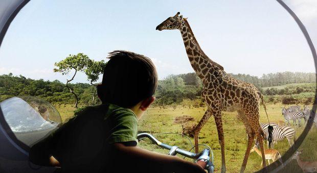 """Zootopia, un parc animalier """"ouvert"""""""