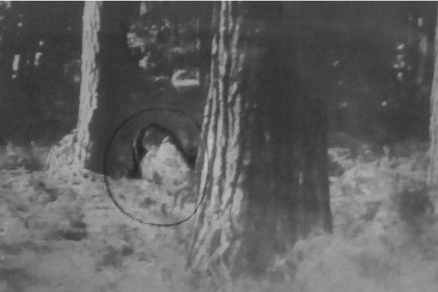 La photographe médium a cerclé de noir la forme indistincte qui serait celle de la petite fille fantôme.
