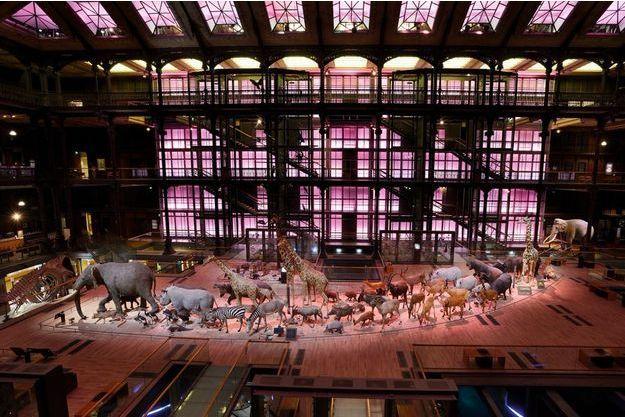 Sous la verrière de la grande nef, la caravane africaine. Dans le nouveau «son et lumière», la paroi éclairée par 143 rampes de leds reproduit le lever du jour. Inauguration le 4 octobre.