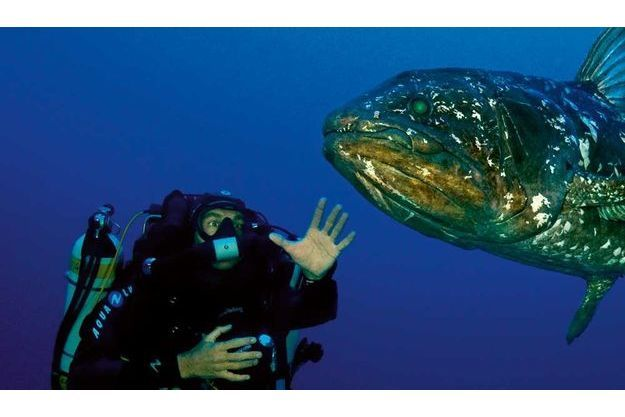 T te t te avec le plus vieux poisson du monde - Grand poisson de mer ...