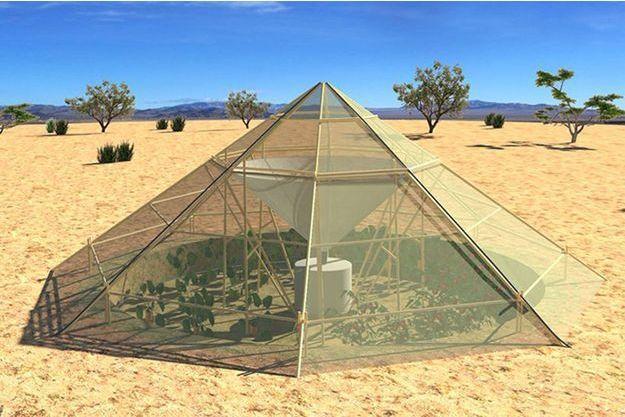 La serre de Roots Up pourrait collecter jusqu'à 200 litres par jour en Ethiopie.