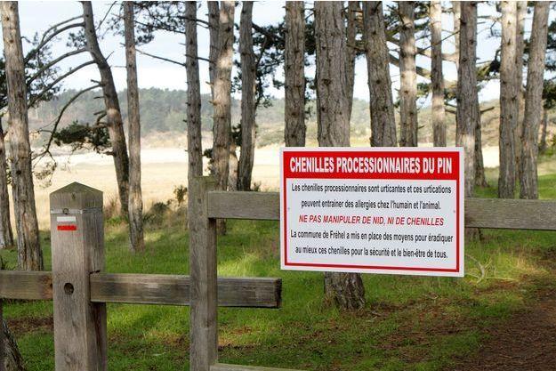Des panneaux d'informations ont été installés à l'entrée des forêts pour prévenir les promeneurs des nuisibles