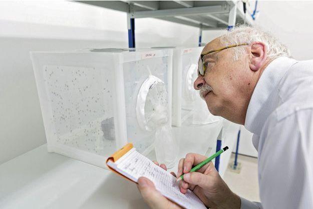 """Erik Orsenna en pleine observation des """"monstres"""" à l'Institut Pasteur de Guyane."""
