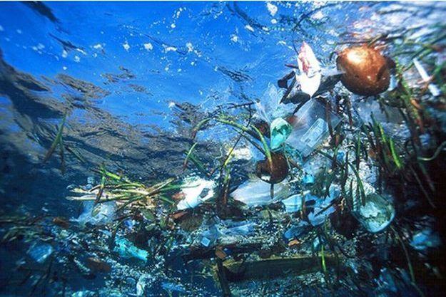 """Pour Gérard d'Aboville, """"La COP21 ne doit pas oublier les océans car le climat est régulé par ces derniers"""""""