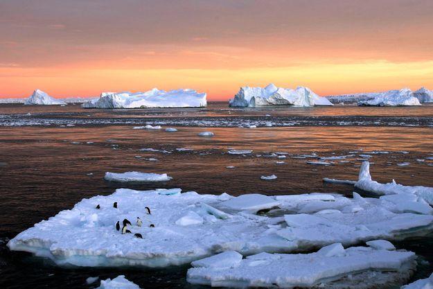 Le taux de CO2 dans l'atmosphère au Pôle Sud a bondi de 3,05 ppm tout au long de l'année dernière