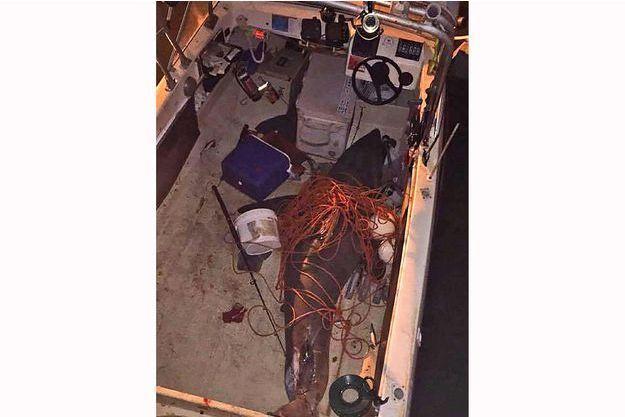 Le requin qui a sauté sur le bateau de Terry Selwood.