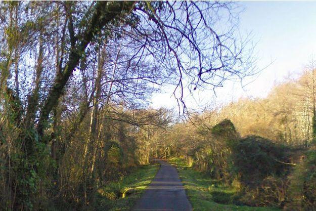 La valise a été découverte dans un fossé à côté de ce chemin boisé à Tarnos.