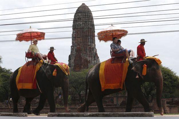 Des éléphants portant des touristes à Bangkok (image d'illustration).