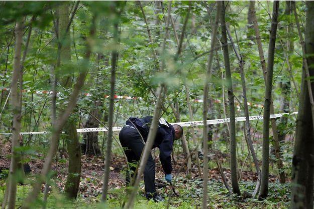Les recherches dans le Bois de Vincennes, en 2012