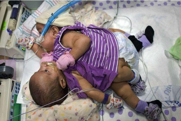 Knatalye et Adeline, nées le 11 avril et photographiées en juillet dernier.