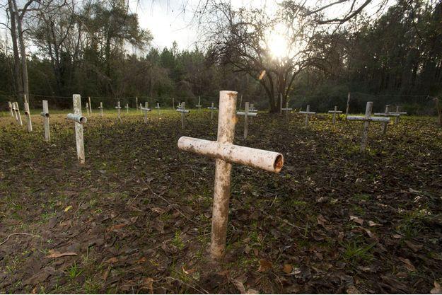 Trente-et-une croix ont été installées sur le terrain de l'école dans le passé.