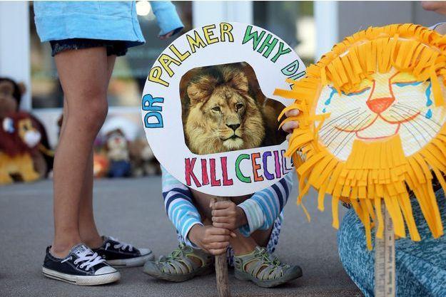 Une vague d'émotion a submergé le monde à l'annonce de la mort de Cecil le lion.