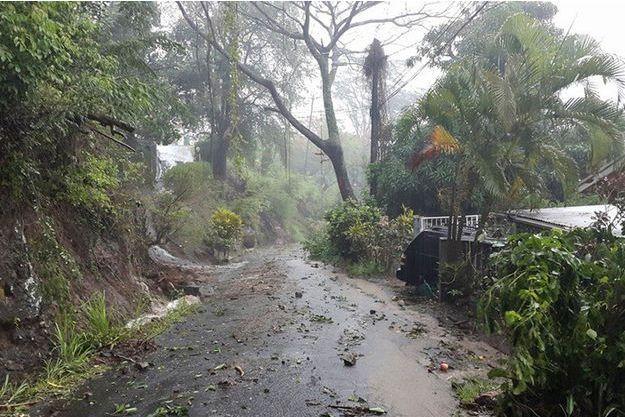 Une route de La Dominique après le passage d'Erika.
