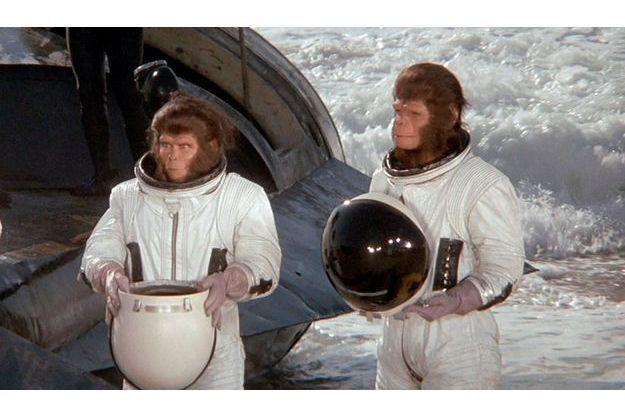 """""""Les évadés de la planète des singes""""."""