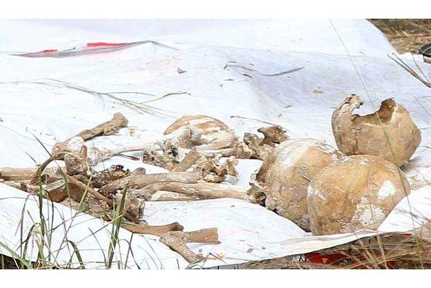 Voici une partie des os retrouvés en janvier.