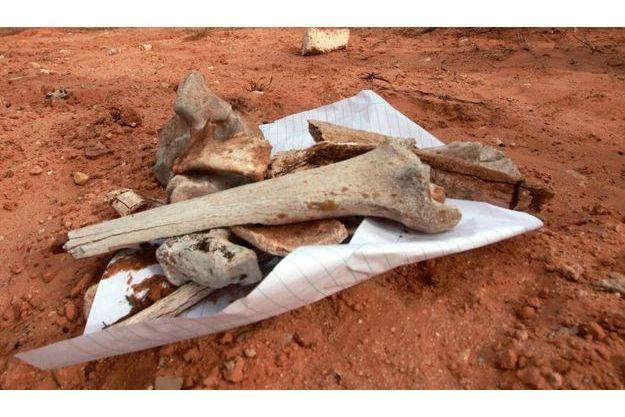 Des restes non identifiées découverts dans le sud de Tripoli.