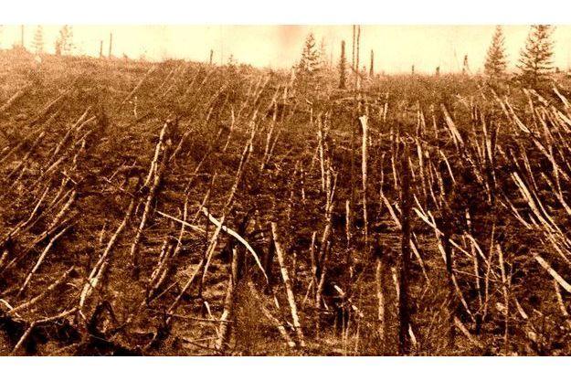 La zone de la catastrophe photographiée en 1938. Des millions de conifères ont été soufllés par l'explosion.