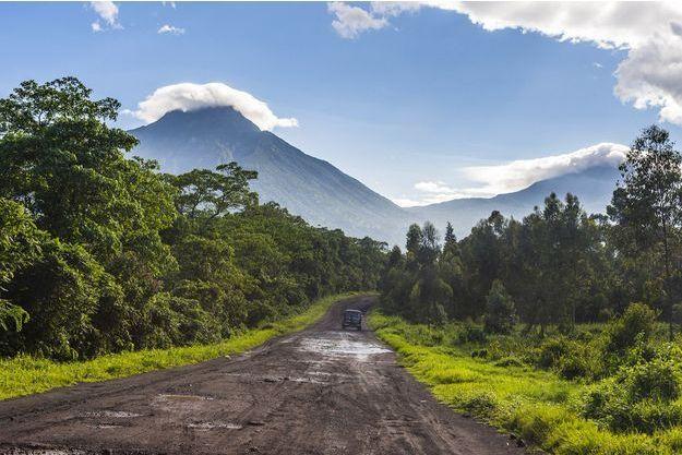 Le parc des Virunga.