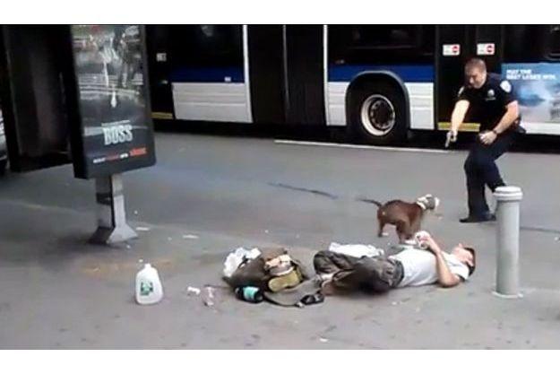 Capture de la vidéo montrant les policiers qui ont abattu le pitbull.
