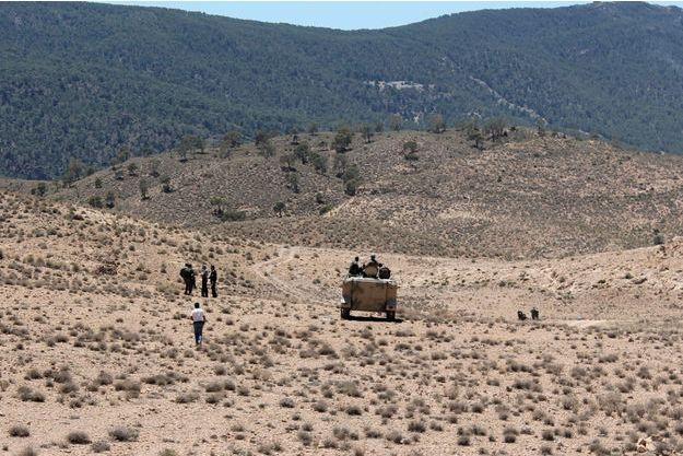 Montagnes Chaambi, en Tunisie