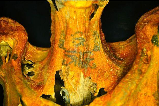 La momie de 3300 ans trouvée en Egypte