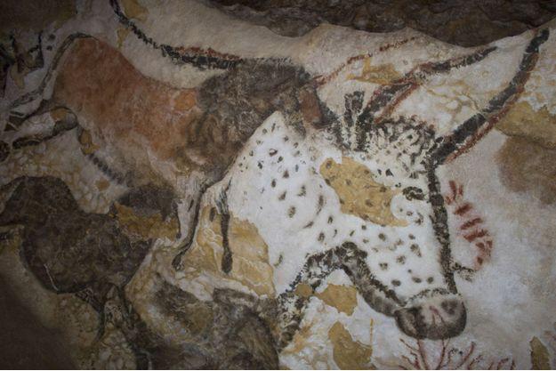 Un auroch sur les parois de Lascaux II