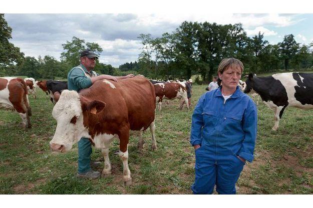Ils n'ont pas les moyens d'acheter du foin dont les prix s'envolent. Dans leurs champs du Limousin, Vincent et Jocelyne Normand sélectionnent, à contrecœur, 6 vaches laitières pour l'abattoir.