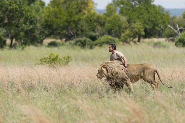 Kevin Richardson lutte contre les réserves qui élèvent des lions pour les faire abattre par des touristes, moyennant 50 000 dollars: «Il y a moins de 4 000 lions sauvages en Afrique. Mais 8 000 en captivité!»