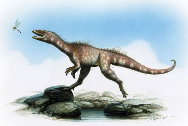 Un dessin qui montre à quoi pourrait ressembler le dinosaure.