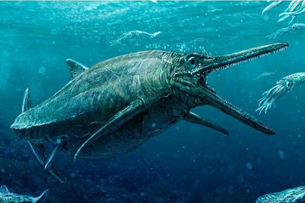 Illustration d'un ichtyosaure