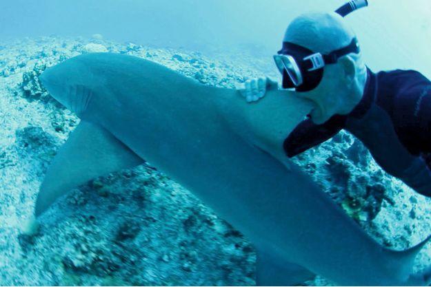 En février2014, à Bora Bora, un an et demi  après sa plongée catastrophique. Membre de l'ONG  écolo Sea Shepherd Conservation Society,  il s'attaque, pour rire, à un mets très apprécié  en Chine, l'aileron de requin, pour dénoncer,  très sérieusement, le massacre de 100millions  de squales chaque année.