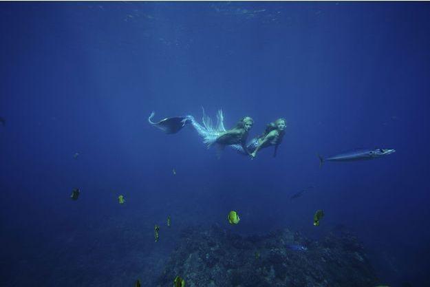 Lundi 16 décembre, Kariel et Hannah, qui se sont connues sur Internet, nagent pour la première fois ensemble, au milieu des poissons-papillons, dans les eaux qui bordent l'île d'Oahu à Hawaii.