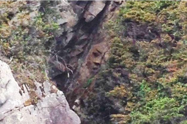 Le mystérieux visage filmé par ABC News.