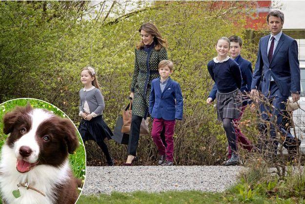La princesse Mary et le prince héritier Frederik de Danemark avec leurs quatre enfants le 16 avril 2017. En médaillon, leur nouvelle chienne Grace en juillet 2017