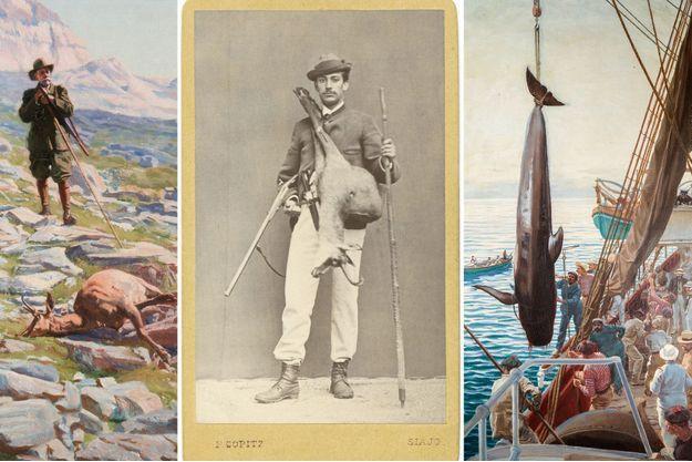 Le prince Albert Ier de Monaco en 1872 à Gmünd en Autriche (au centre). Détail d'une chasse à Isards dans les Pyrénées, 1919 (à gauche) et Chasse aux cétacés, 1909 (à droite), par Louis Tinayre