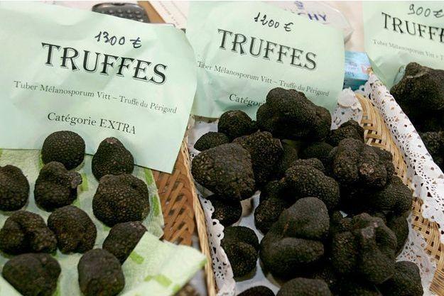 Des truffes du Périgord