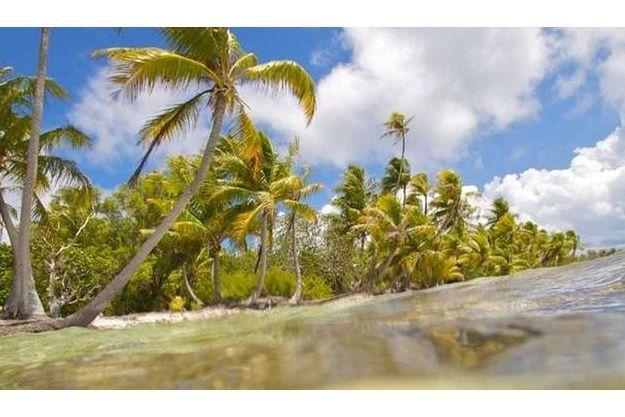 Les îles privées n'ont plus la cote. Ici, l'île Mounti en Polynésie française, à vendre pour 800 000 euros.