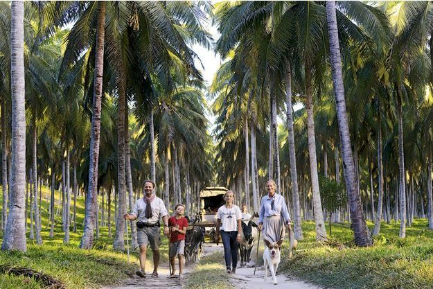 Alexandre, Ulysse, Philaé et Sonia, devant leur charrette tirée par des zébus dans la Soavoanio, une immense cocoteraie sur la côte de la Vanille, en juillet.