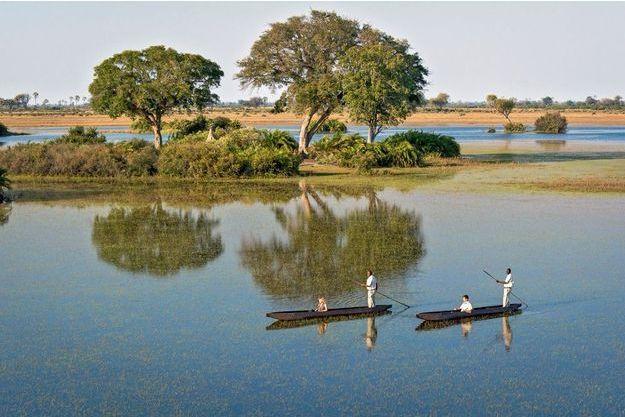 L'Afrique en vert pour des séjours respectueux, ici le delta de l'Okavango au Botswana. L'agence Luxethika s'est spécialisée dans les safaris minimisant l'impact sur la faune et la flore.