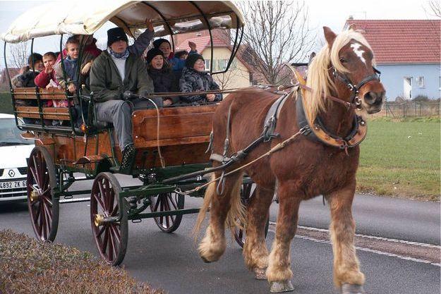 Ce cheval de trait s'occupe des travaux d'arrosage, du transport des enfants à l'école et des jardins maraichers.