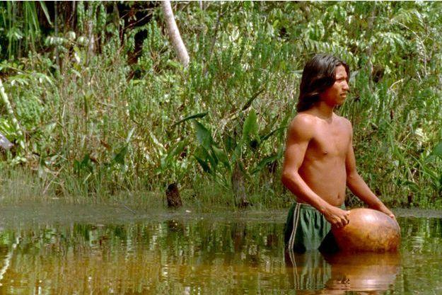 Extrait du film «Le chant de la forêt».