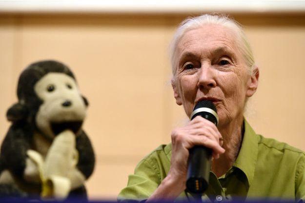 Jane Goodall lors d'une conférence en Espagne, accompagnée de Mister H.