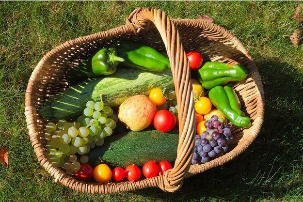 Un panier de légumes bio.