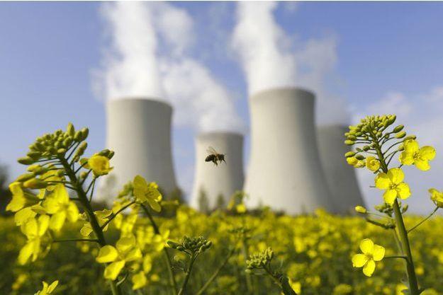 Une abeille butine à proximité d'usines.