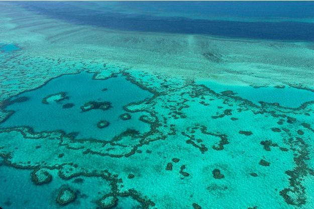 La Grande barrière de corail vue de haut